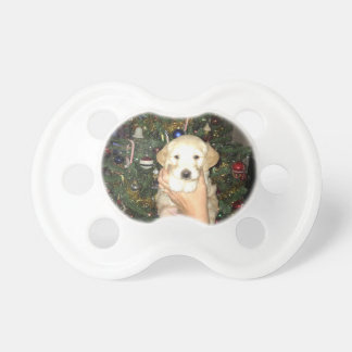 Charlie The GoldenDoodle Puppy on Christmas Pacifier