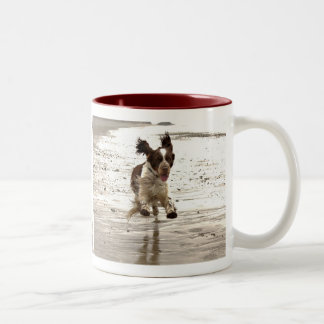 Charlie The Springer Two-Tone Coffee Mug