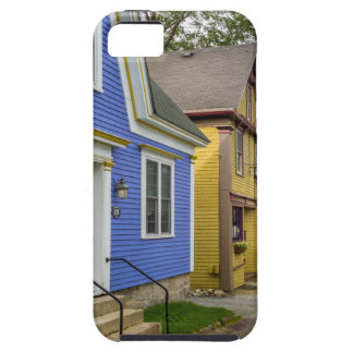 Charlotte Lane Shelburne iPhone 5 Covers