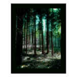 Charm forest print