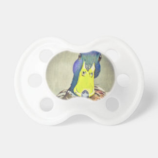 Charming Duck Pacifier