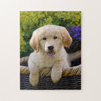 Charming Goldie Dog Puppy Game 11x14 Jigsaw Puzzle