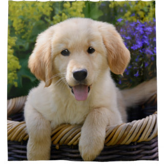 Charming Goldie Dog Puppy Shower Curtain