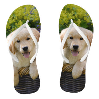 Charming Goldie Retriever Dog Puppy Photo Portrait Flip Flops