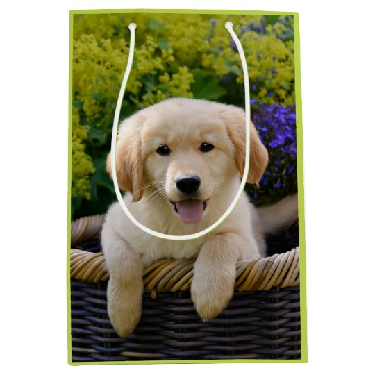 Charming Goldie Retriever Dog Puppy Photo Portrait Medium Gift Bag