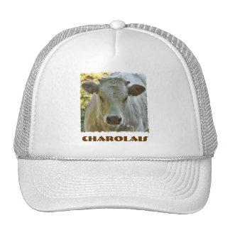 Charolais hat