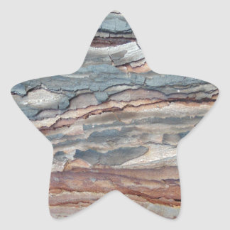Charred Pine Bark Star Sticker