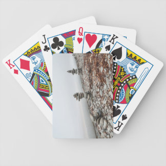 chart of plays, photo inukshuk bicycle playing cards