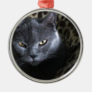 Chartreux  (karthuizer) metal ornament
