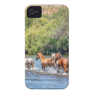 Chasing Freedom iPhone 4 Case