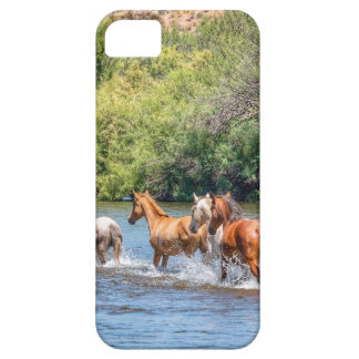 Chasing Freedom iPhone 5 Case