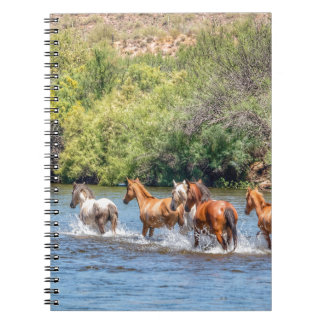 Chasing Freedom Notebook