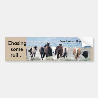 Chasing Tail Bumper Sticker