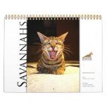 Chat 2015 de la savane de calendrier de Syminou