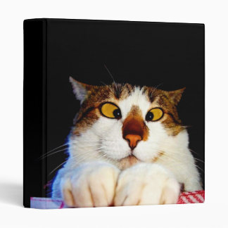 chat binders