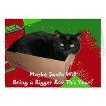 Chat dans la carte de Noël de boîte