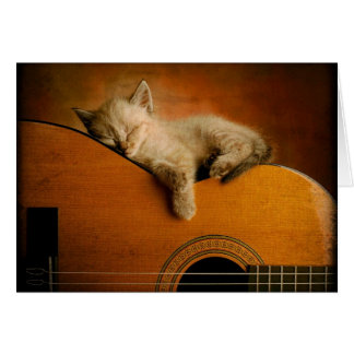 Chat dormant sur la guitare carte de vœux