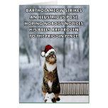 Chat drôle de Noël Carte