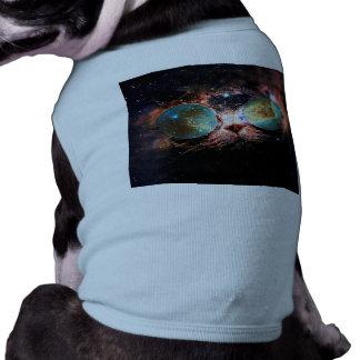 Chat frais de l'espace avec des verres de vêtements pour animaux domestiques