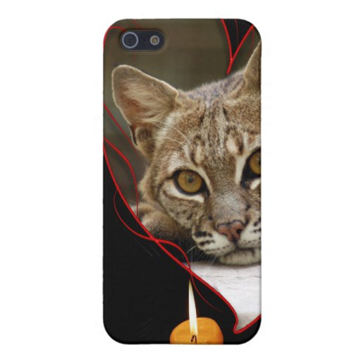 Chat sauvage coques iPhone 5