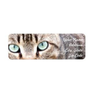 Chat tigré étiquettes d'adresse retour