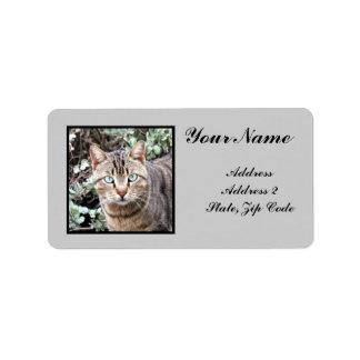 Chat tigré étiquettes d'adresse