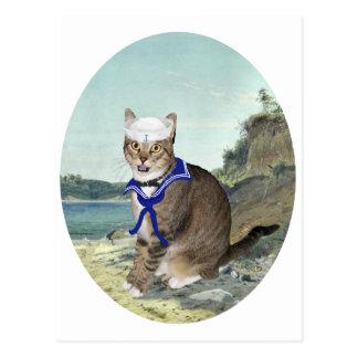 Chat tigré à la plage carte postale