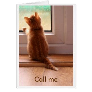 chat tigré - appelez-moi carte