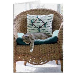 Chat tigré gris et blanc dans la chaise carte de vœux