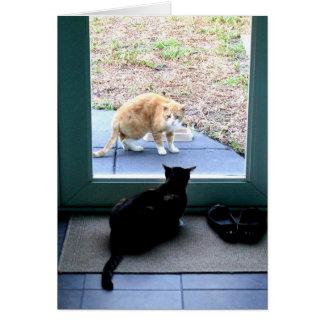 Chat tigré orange à la porte arrière carte de vœux
