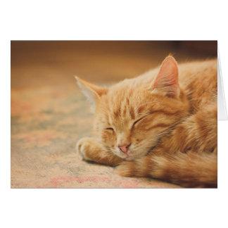 Chat tigré orange de sommeil carte de vœux
