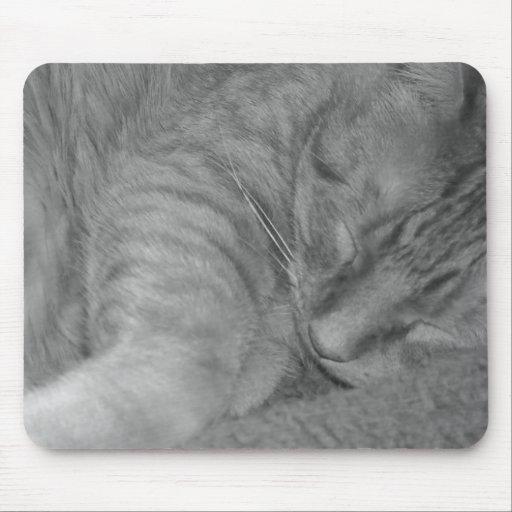 Chat tigré/photo oranges de noir et de blanc tapis de souris