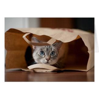 Chaton dans le sac d'épicerie carte de vœux
