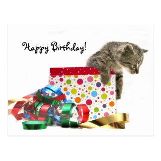 Chaton de joyeux anniversaire carte postale