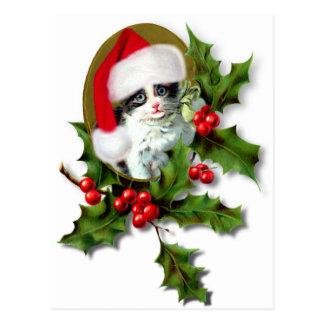 Chaton de Noël Cartes Postales