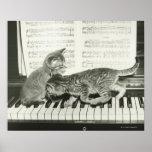 Chaton deux jouant sur le clavier de piano, (B&W) Posters