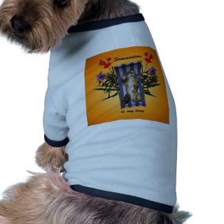 Chaton drôle se trouvant sur la chaise longue manteaux pour animaux domestiques