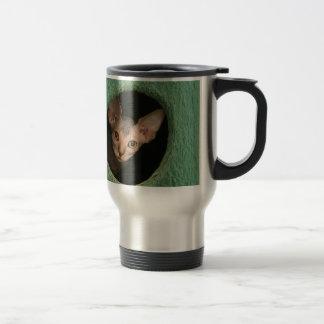 Chaton mignon de sphynx mug de voyage en acier inoxydable