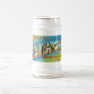 Chattanooga Tennessee TN Vintage Travel Souvenir Beer Stein