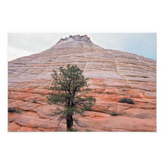 Checkerboard Mesa Photo Print
