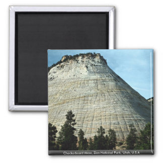 Checkerboard Mesa, Zion National Park, Utah, U.S.A Magnet