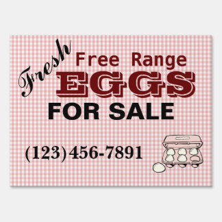 Checkered Fresh Free Range Eggs