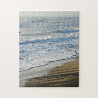 Checking The Shoreline Jigsaw Puzzle