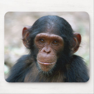 Cheeky Chimp Mouse Pad