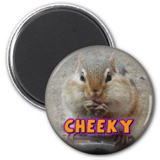 Cheeky Chipmunk Magnet