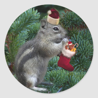 Cheeky Christmas Chipmunk Classic Round Sticker