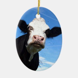 cheeky cow ceramic ornament
