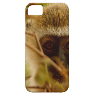 Cheeky Monkey. Case For The iPhone 5