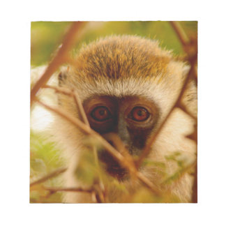Cheeky Monkey. Notepad