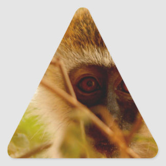 Cheeky Monkey. Triangle Sticker